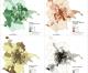 Presentazione del Blog #mapparoma a Tor Pignattara